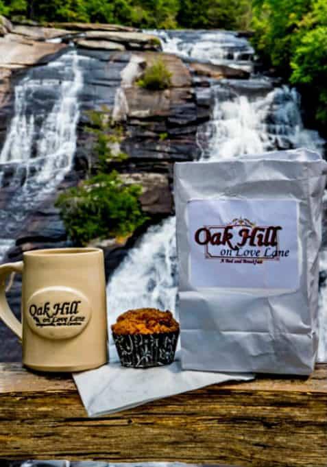 muffin photo at waterfall